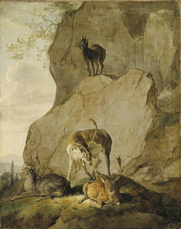 Stags in a Rocky Landscape
